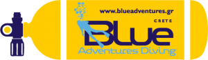 Blue Adventures Diving